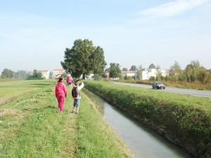 canale_mulini